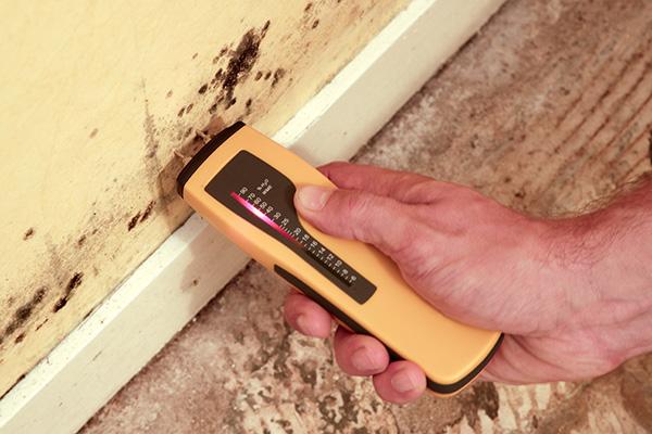 test taux humidité pendant la rénovation d'une maison