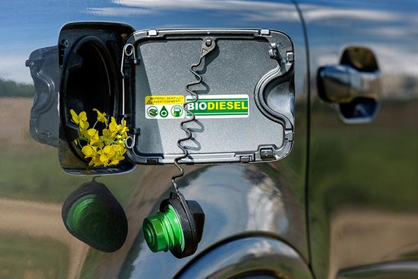 biocarburant voiture