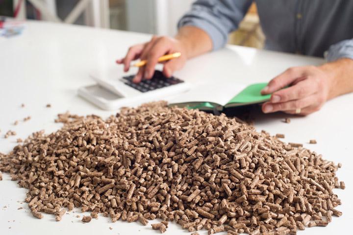L'énergie biomasse produite par les centrales