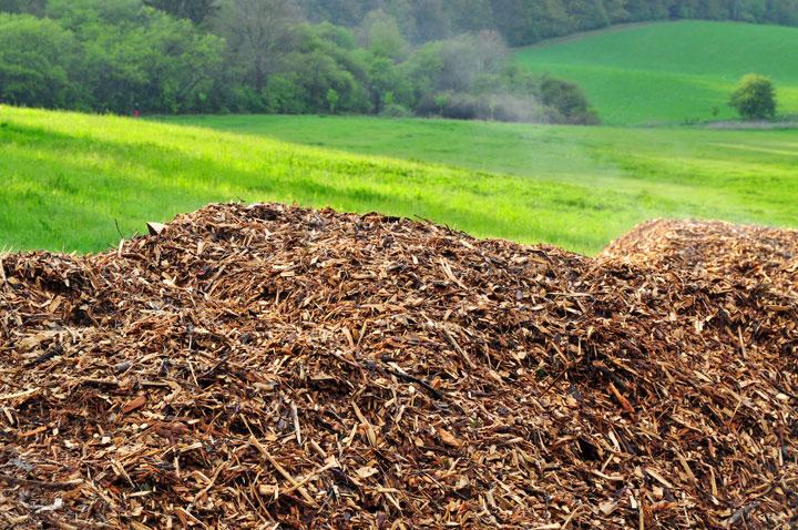 avantages de l énergie biomasse