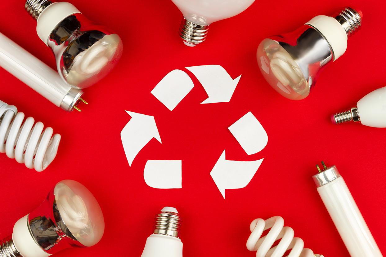 Quelles sont les ampoules recyclables ?